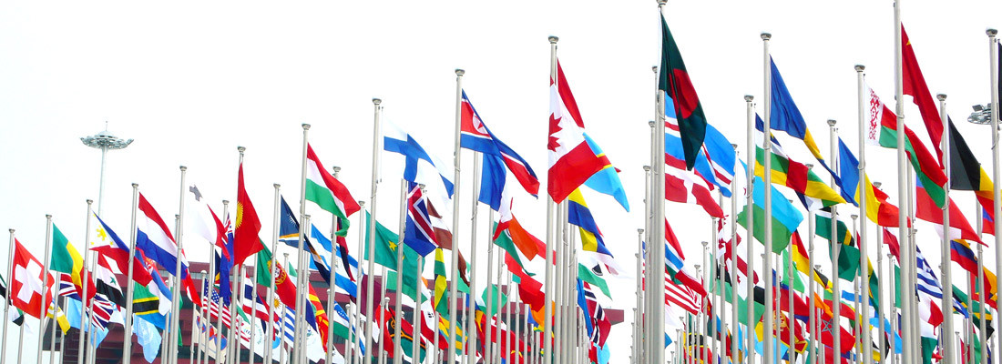 Lenora Billings-Harris, 10 Tips for Going International